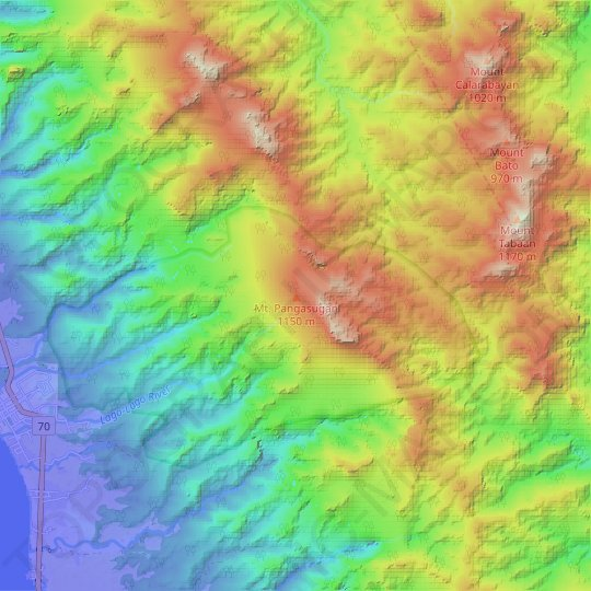 Mt. Pangasugan topographic map, elevation, relief